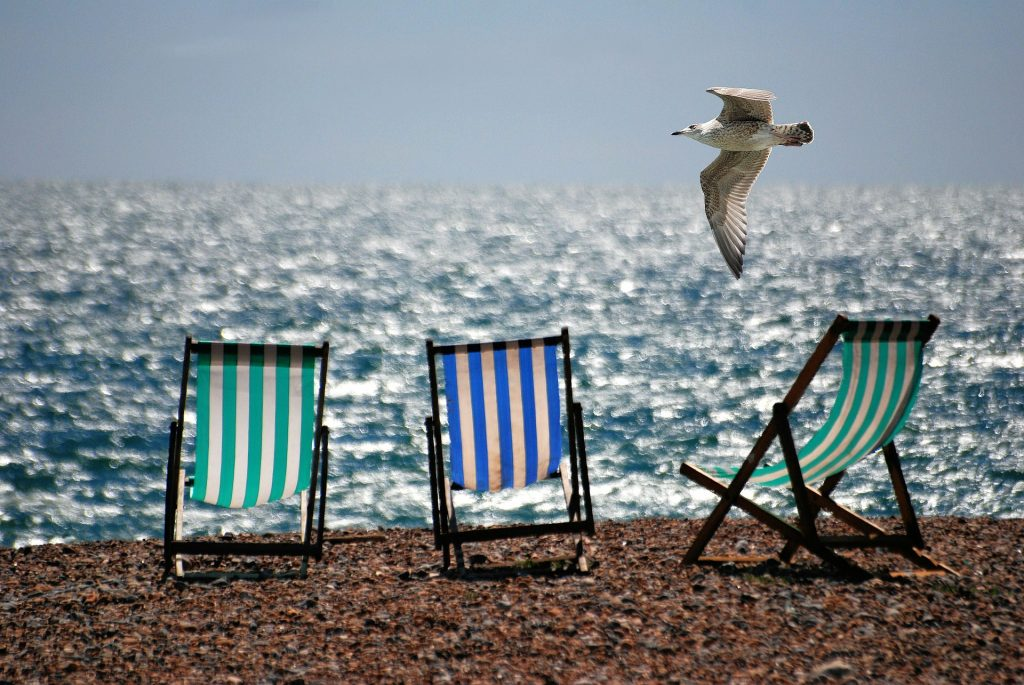 a pebble beach with 3 deck chairs on and glistening sea with a seagull flying past