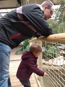 Showing daddy the fish at the zoo