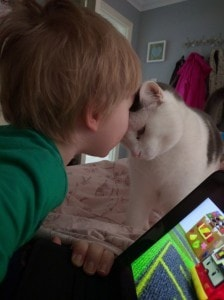 Cat +iPad = content toddler & peace for mummy