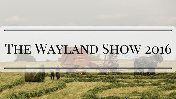 The Wayland Show 2016