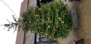 Christmas at Wroxham Barns