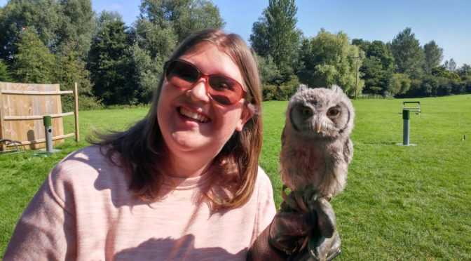 Flying Owls at Lavenham Falconry
