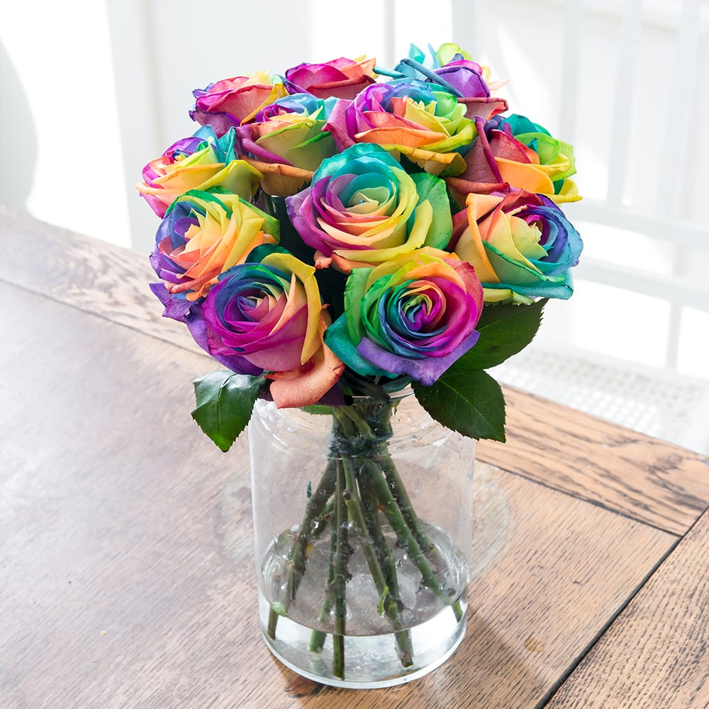 blossoming rainbow roses