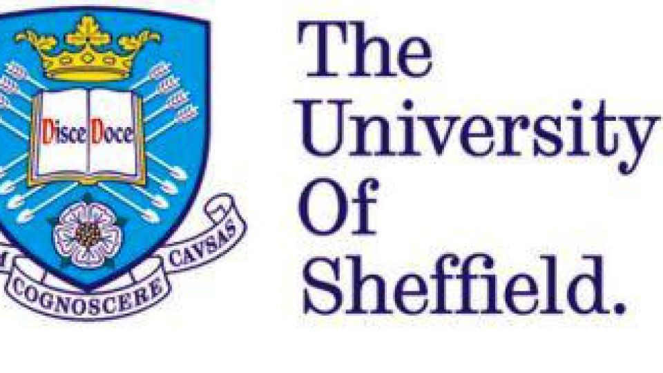 Photo of University of Sheffield Nigeria Merit Post Graduate Scholarships