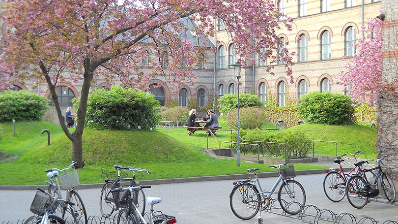 Photo of Apply for Ph. D. Fellowship in University of Copenhagen