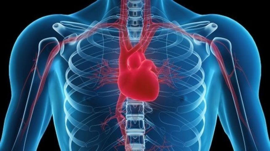 Photo of Tips to Reduce The Risk of Having A Heart Disease [2]