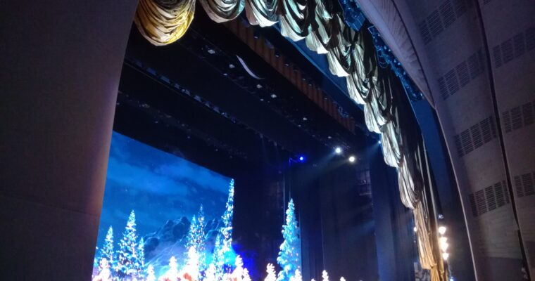 Assistere ad un Musical a Broadway