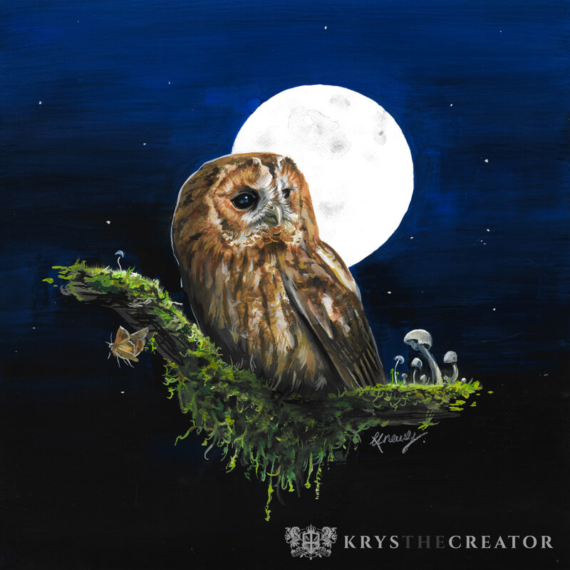 Tawny Owl Painting