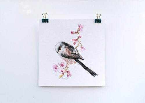 Long tailed tit wildlife art print British bird