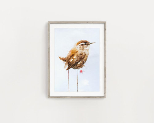 Wren Watercolour Painting