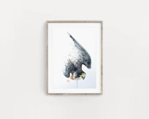 Peregrine Falcon Art Painting
