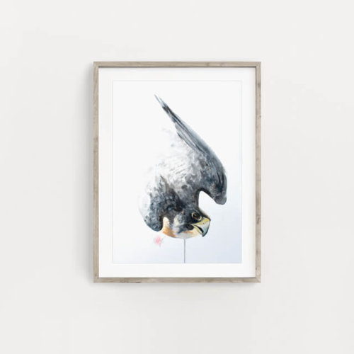 Peregrine Falcon Art Painting