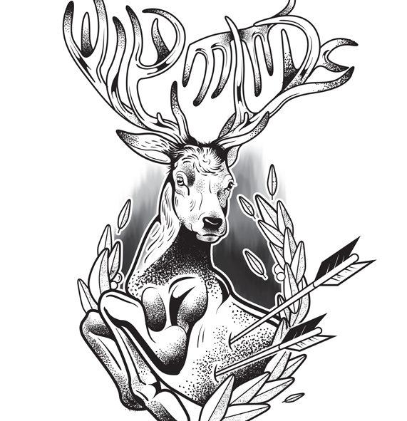 Stag Deer T-shirt Design
