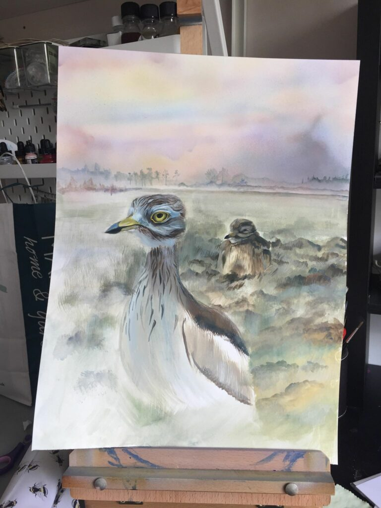 Gouache painting of two Eurasian Stone Curlew (Burhinus oedicnemus) in a typical Breckland landscape, Norfolk