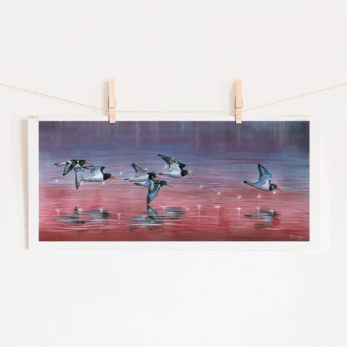 Oyster Catchers Wildlife Bird Painting