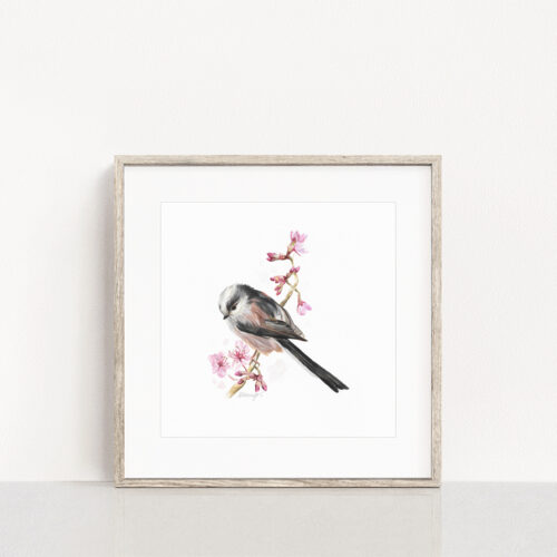 Long Tailed Tit Painting Print
