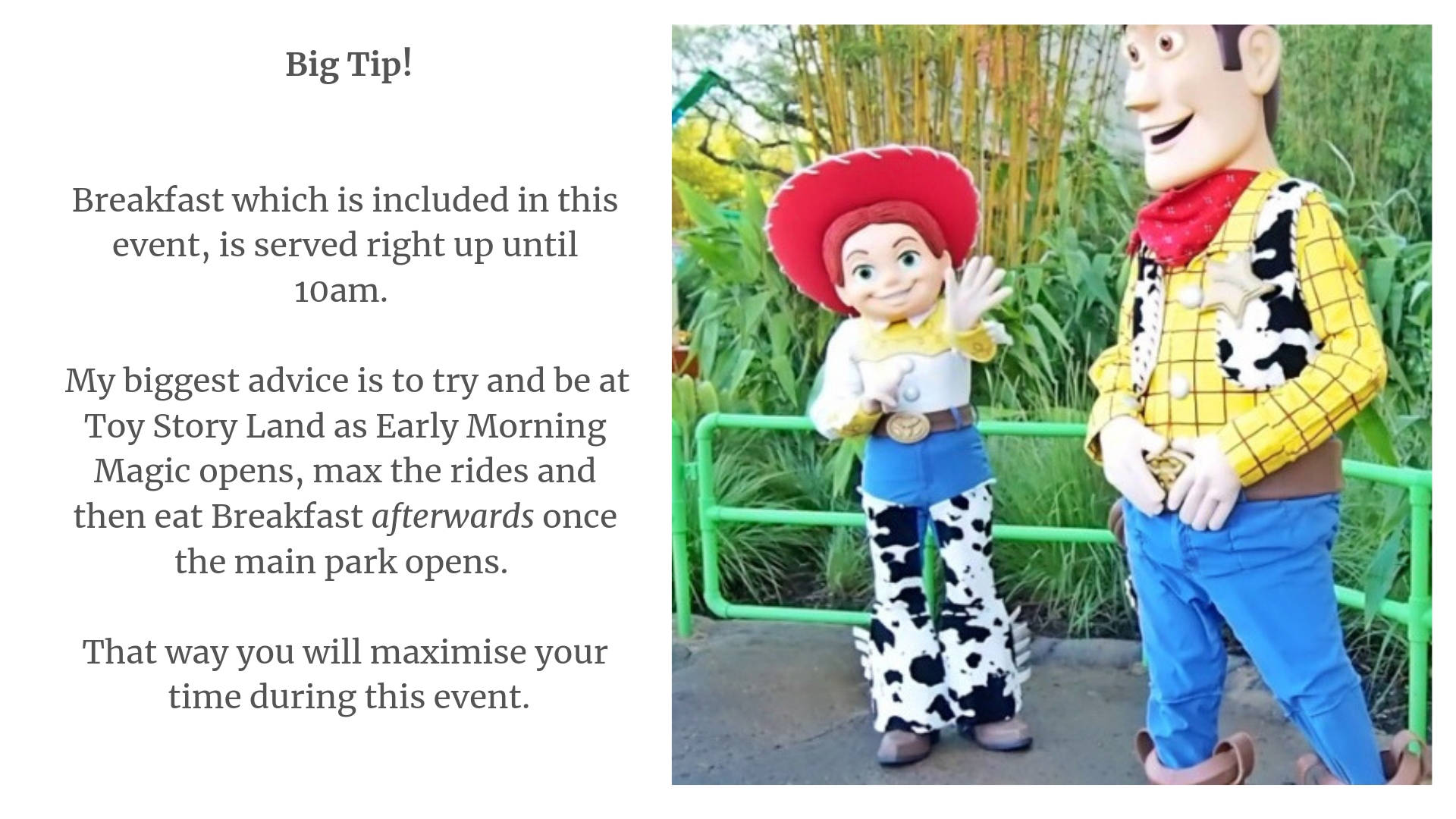 Toy Story Land Early Morning Magic Review