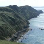 Cliff line West of Strumble Head