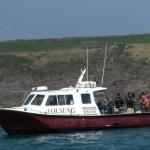A mackerel fishing trip in Mill Bay.