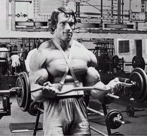 Arnolf biceps