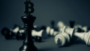 Bitcoin Settlement Volume Reaches Record Daily High