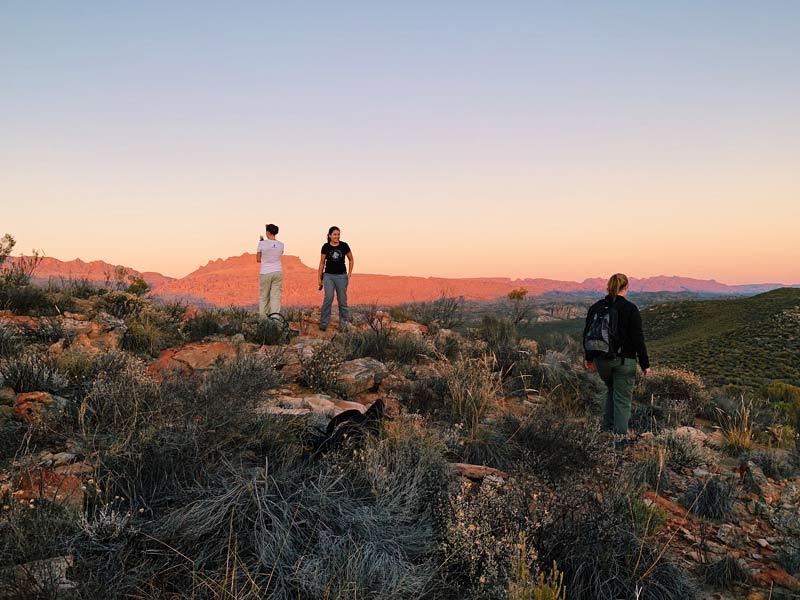 Cape Leopard Trust - Anita Wilkinson, Jeannie Hayward and Lana Müller