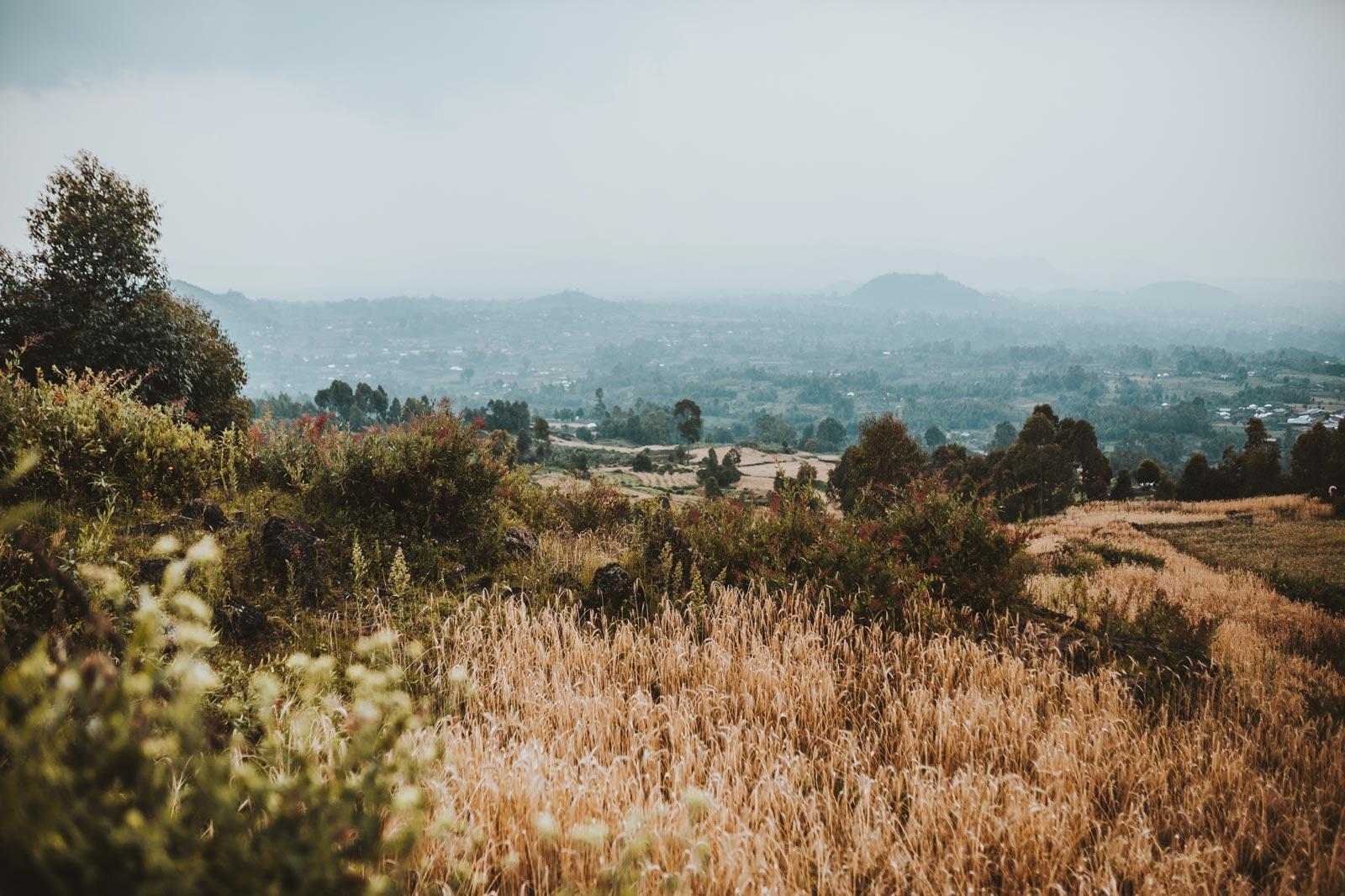 Rise of the Matriarch | Gloria Asasira, Mgahinga National Park, Uganda