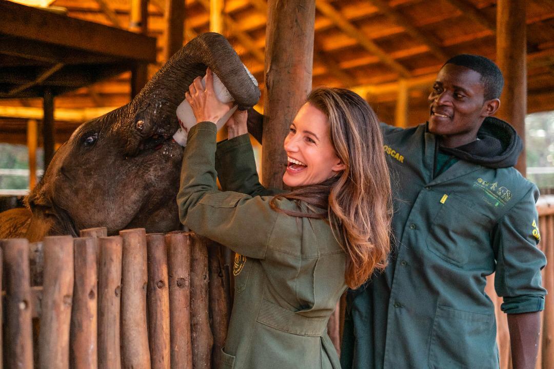 Kristin Davis feeding a baby elephant in Zambia with Game Rangers International