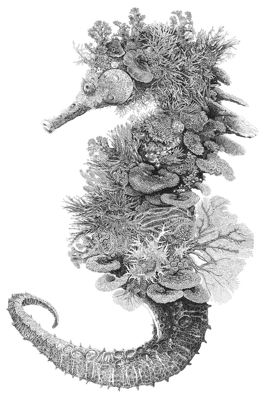 artwork illustration art