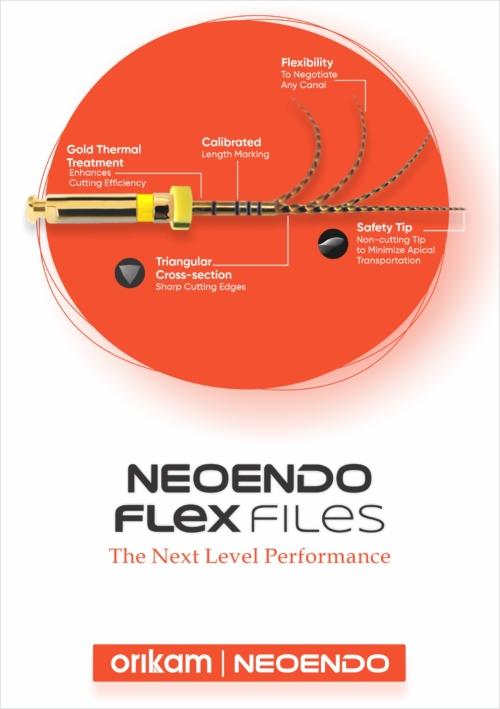 Neoendo Flex File