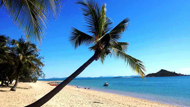 Day trip to cape gloucester