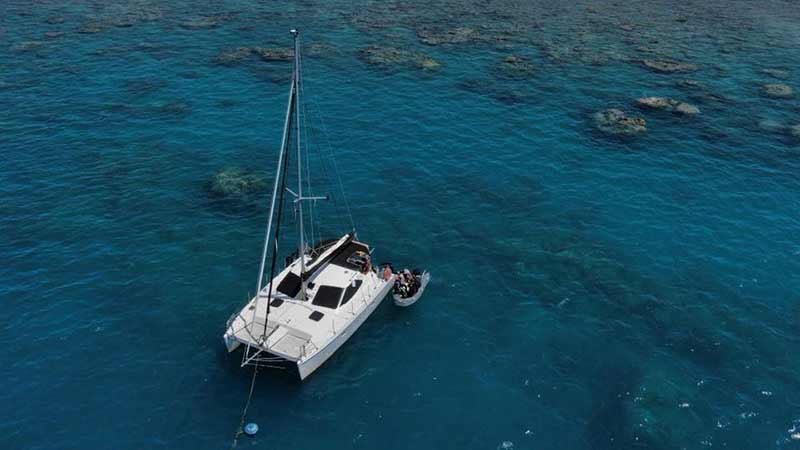 diving day tours from airlie beach
