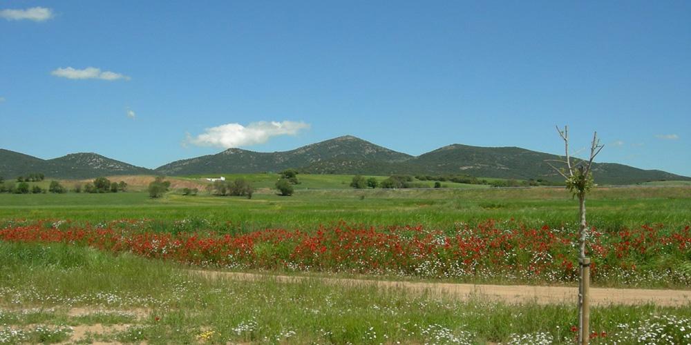 Villarreal de Huerva
