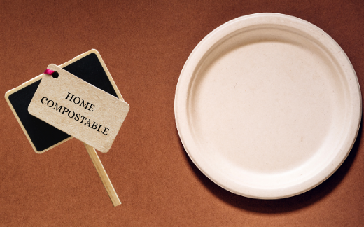 What is bagasse?