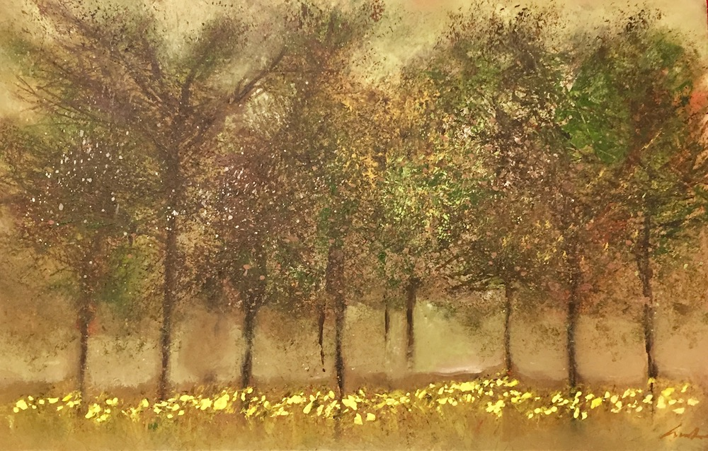 Budding Trees with Carpet of Daffodils