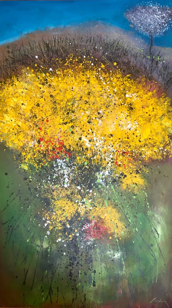 Gorse in Bloom