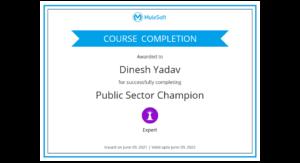Public Sector Champion