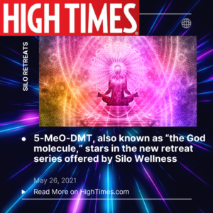 5-meo-dmt-high-times-toad-retreat