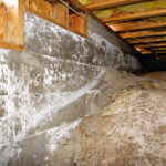 Crawl Space Mold Side