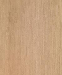 Ivory Oak Texture