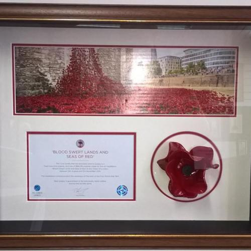 Poppy and Certificate  and image from box