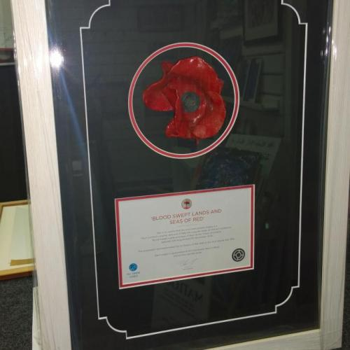 Poppy and Certificate - white frame