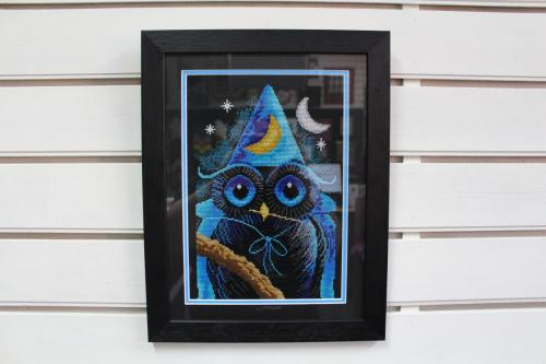 X-stich owl on black aida with double mount.