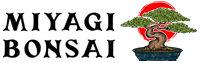 Miyagi Bonsai
