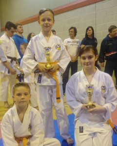 Club Comp 2015 Yellow and Orange Belts 10+ Years