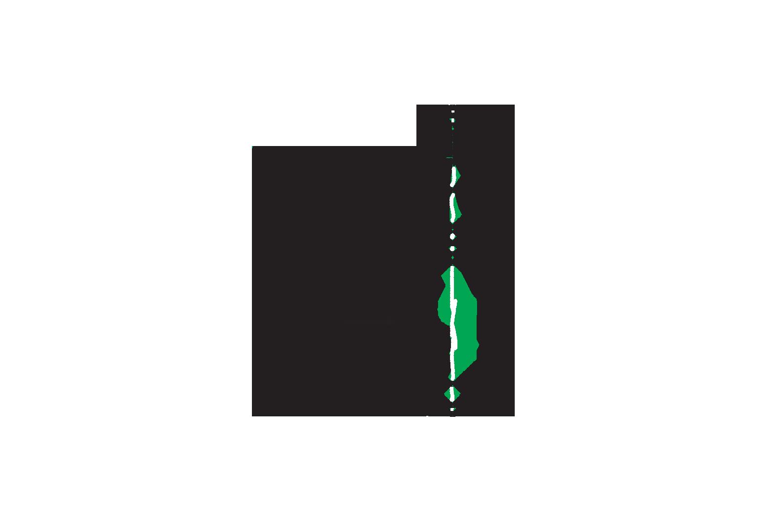 Eco Friendly Gift Indoor Herb Garden