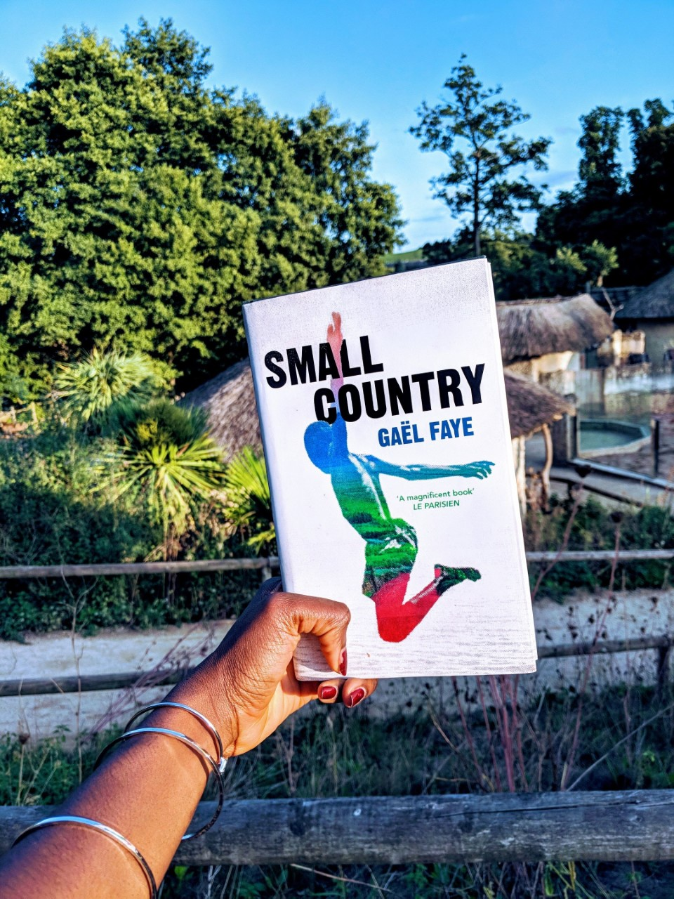 The Call Of Home: Book Review Small Country