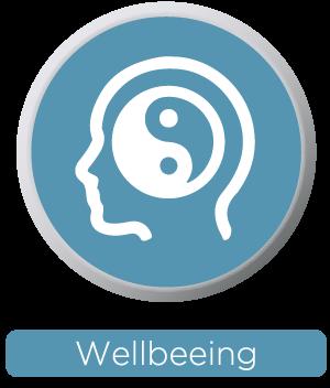 Ballancer Pro wellbeing symbol