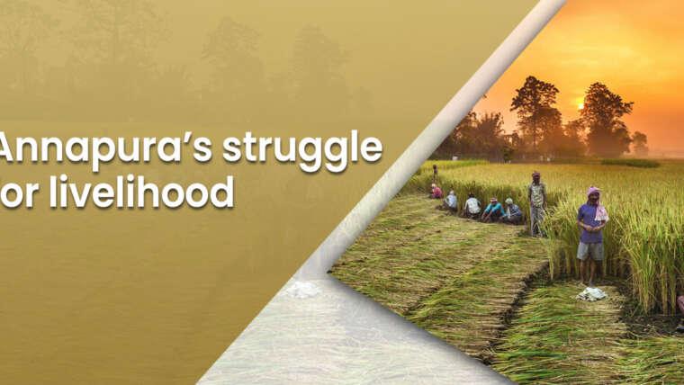 Annapura's struggle for livelihood