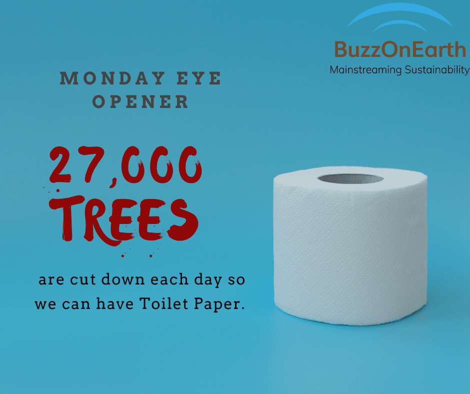 The Wastage called Toilet Paper